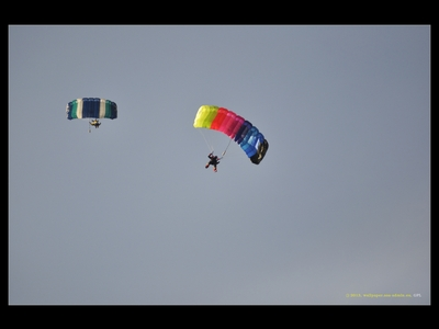 Spadochroniarze / Parachutists